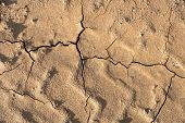 Dry Cracked Ground Background Texture. Dried Soil poster