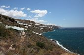 Plantations At The Coast In Spain
