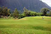 Golf At Base Of Mountain, Hawaii