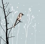 Bird in Blizzard