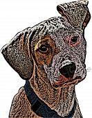 Flop Eared Mutt Illustration