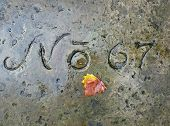grave number 67