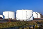 image of truck farm  - white tank in tank farm with blue sky - JPG