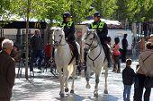 Madrid Horse Police