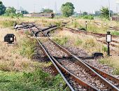 pic of railroad yard  - Junction yard to the locomotive area of urban station - JPG