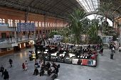 Atocha Railway Station Interior In Madrid, Spain