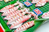 Bbq Grilled Squids On Skewers