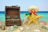 Starfish And The Lost Treasure