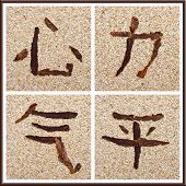 Chinese Character For Heart, Force, Life Energy, Peace