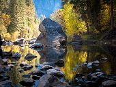 Tree And Foliage Reflections The Merced River In Yosemite