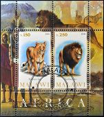 MALAWI - CIRCA 2010: Stamps printed in Malawi shows lion and lioness circa 2010