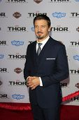 LOS ANGELES - NOV 4:  Jeremy Renner at the Thor: The Dark World' Premiere at El Capitan Theater on N