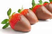 Chocolate Dipped Strawberries placed on white background