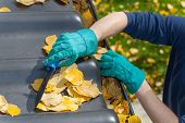 stock photo of trough  - Man standing on the ladder and cleaning the roof from autumn leaves - JPG