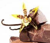 Chocolate Pieces With Vanilla Flower