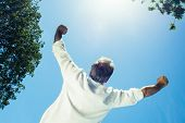Rear view of successful businessman with arms outstretched against clear sky