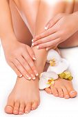 beautiful french manicure and pedicure  with white orchid on the white