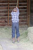 pic of tire swing  - Young boy swinging on a rope swing in the barn - JPG