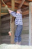 image of tire swing  - Young boy swinging on a rope swing in the barn - JPG