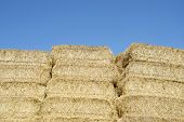 Straw bales stacked with blue sky