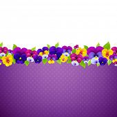 Poster With Colorful Pansies With Gradient Mesh, Vector Illustration