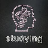 Education concept: Head With Gears and Studying on chalkboard background