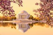 Beautiful Early Morning Jefferson Memorial