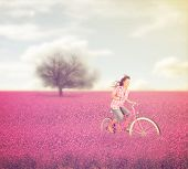 a beautiful tree in a red field with a woman riding through done with a warm instagram like filter