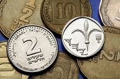Coins of Israel. Lily depicted in the Israeli one new shekel coin and the Israeli two new shekels coin.