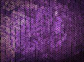 Violet Sequins Embroidered On Black Fabric
