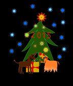 Goats celebrates Christmas and New Year