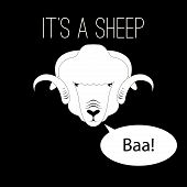 Sheep Head saying baa
