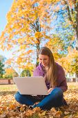 Pretty woman working outdoors in an autumn park on her laptop as she sits cross-legged on the ground amongst fallen leaves smiling with pleasure