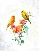 pic of songbird  - Watercolor Digital Painting Of Flowers And Yellow Birds - JPG