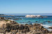 Monterey, the coast