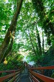 Staircase To The Beach. Federal Way, Wa