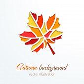 Colorful Cutout Autumn Leaf. Vector Illustration