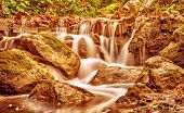 Beautiful waterfall in autumnal park, dry orange foliage in the river flowing on stones in forest, a