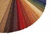 Samples Of Carpet Covering