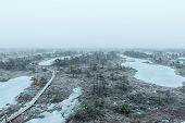 pic of frostbite  - wooden boardwalk in frosty winter bog landscape with frozen nature - JPG