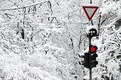 Frozen Traffic Light