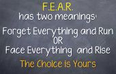 pic of reflection  - Motivational saying that you have 2 choices with fear to either run from it or rise and take it on - JPG