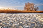 Winter Landscape With Frozen River, Tree, Reeds And Sunset Sky
