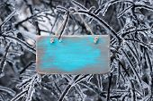 Blank wooden sign hanging on ice covered tree branches