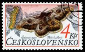 Vintage  Postage Stamp. Butterfly. Saturnia Puri.