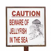 Sign: Beware of Jellyfish (Isolated)