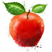ripe apple logo design template. food or fruit icon.