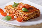 picture of lasagna  - Italian Lasagna with fresh basil on a white plate - JPG
