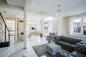 Elegant Living Room In A Bright Apartment