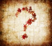 Question Mark Made By Leaves